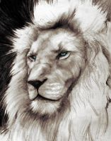 White Lion colo by YannWeaponX