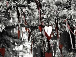 Hearts by DanNoland