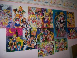 Wall of Sailor Moon by tini