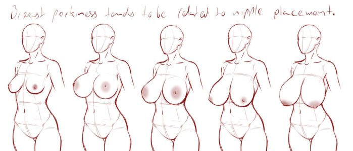 Breast drawing: perkiness by Ecchi-Senshi