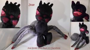 Jose the Spider Pony (For Sale!) by Chanditoys