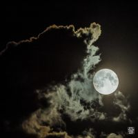 Eating the moon by sylvaincollet