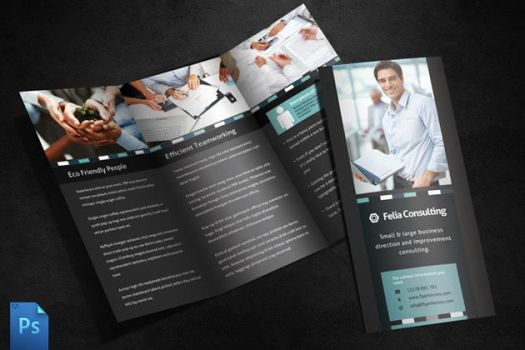 Felia 3 Fold Brochure Template by quickandeasy1
