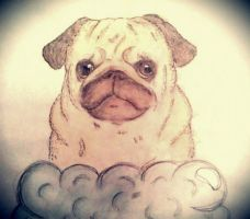 Pug in the clouds by whoffarted