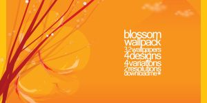 Blossom Wallpack by axii