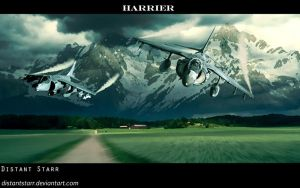 Harrier Pasture by Distantstarr