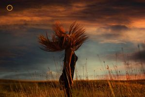 Mmm0252 by metindemiralay