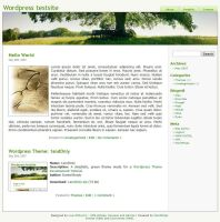 Wordpress Theme - 1andOnly by danbradster