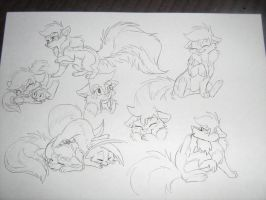 Skunk sketches by Ninchiru
