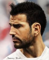 Cesc Fabregas - Video by KerovinBlack