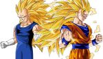 SSJ3 Goku And SSJ3 Vegeta by Buffolo1998