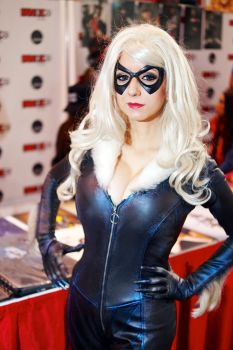 Black Cat By Riddle Fan Expo 2015 #05 by Lightning--Baron
