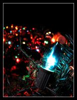 Christmas Lights by SurfGuy3