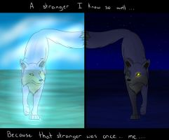 A stranger I know by Squiggy13