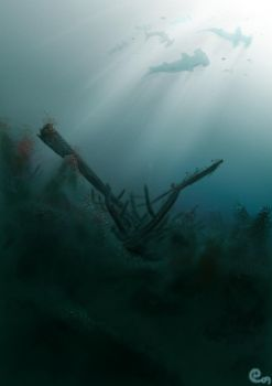 shipwreck cove by turpentines