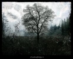 Whispers Of Memories Pt 2 by IrondoomDesign