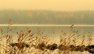 autumn view .. by KariLiimatainen