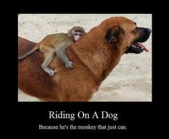 Riding On A Dog by SquishyPandaPower