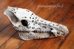 Wild boar skull sculpted by GreatShinigami
