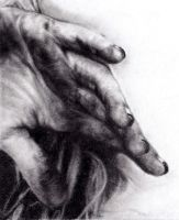 Hand drawing by Sikoian