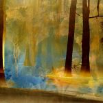 Surreal Background Forest by mysticmorning