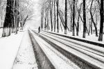 Heavy Snow I by Sulde