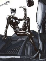 Catwoman - Cat got your keys by EGoff