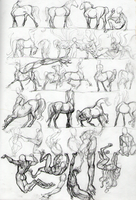 Sketchbook Scan: Centaurs by AmandaRaquel