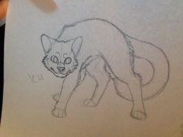 [YCH AUCTION] realistic Cat CLOSED by Unbeatablemeghan13