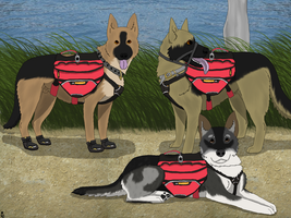 Working Pack Dogs by NightCur