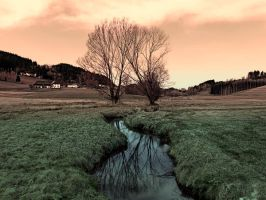 A stream, dry grass, reflections and trees II by patrickjobst