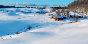 Winter at Jenne Farm DT6 2548-1-2 by detphoto