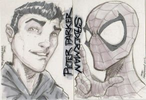 Perter Parker/Spiderman Alter Ego Sketch Cards! by MikeVanOrden