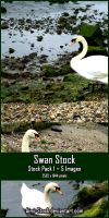 Swan Stock - Pack 1 by Aimi-Stock