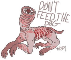 D0N'T FEED THE D0G by grosskiddo