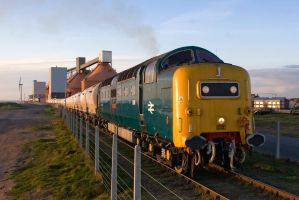 Deltic - May 2011 2 by neonwilderness