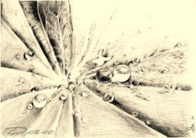 leaf by drtsanchez by TraditionalArt