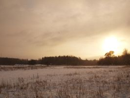 Winter Landscape 1 by da-toss-stock