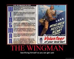 The Wingman by tu160