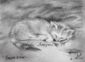 Sleeping kitten by SOFIAMETALQUEEN