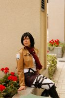 AOT: A Fierce Rose by YamiAeris
