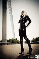 Black Cat IV by kn8e