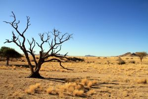 Solitaire Country Lodge, Namib by ElSpaZo