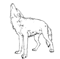 MS PAINT- Wolf howling! - base by claramalka