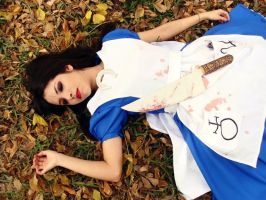 Alice Madness Returns : dream in wonderland by Nani-Dechuka