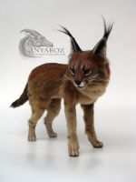 Caracal Room Guardian by AnyaBoz