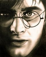 Harry Potter by Vickki101