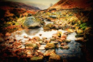 The Rocky Stream... by TheBaldingOne