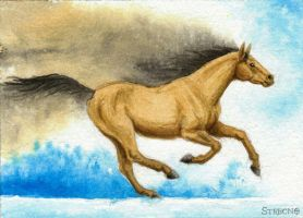 Ink Horse ACEO by Strecno