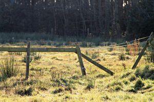 fence on a farm. by teaandsympathy23